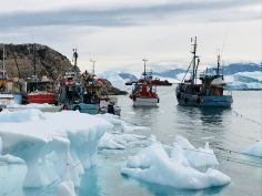 Habour Greenland